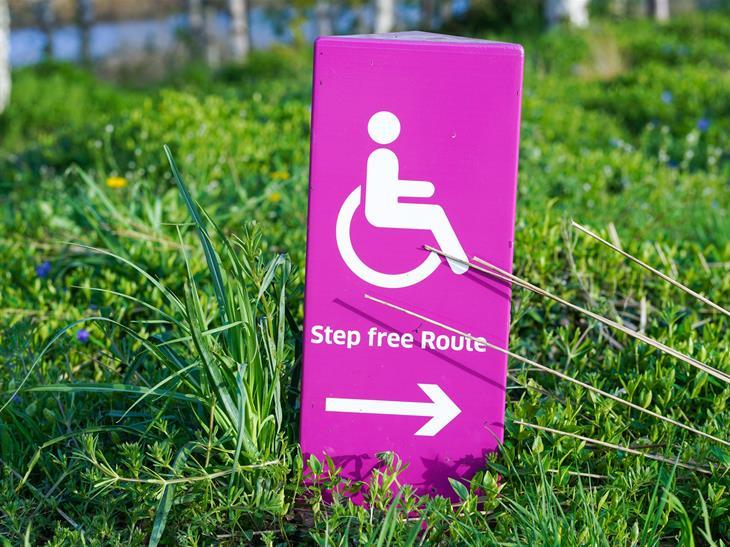 Numero di disabili in Italia